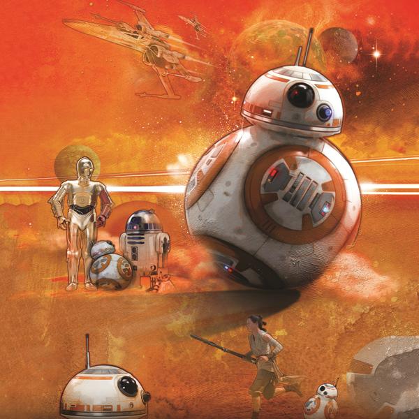 Canvas Star Wars 30x30 (BB-8 Art)